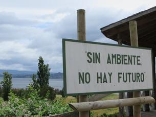 sin ambiente no hay futuroの写真素材 [FYI00677361]