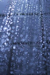 shower sprayの写真素材 [FYI00677407]