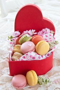 colorful macarons red boxの素材 [FYI00677744]