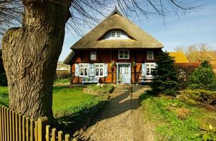 typical fish landhaus,fischlandの写真素材 [FYI00678109]