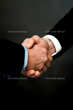 gestureの素材 [FYI00678243]
