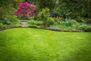 beautifully landscaped garden with lawnの写真素材 [FYI00678643]