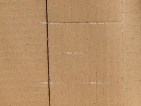 brownの写真素材 [FYI00678754]