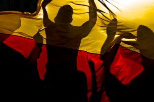 fans celebrate behind germany flagの写真素材 [FYI00678861]