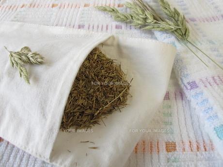 hayflowersの素材 [FYI00679131]