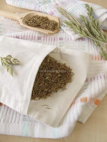 hayflowersの素材 [FYI00679134]