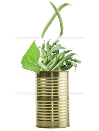 greenの素材 [FYI00679194]