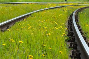 flowers tracksの写真素材 [FYI00679517]