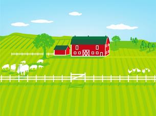 farm with sheepの写真素材 [FYI00679984]
