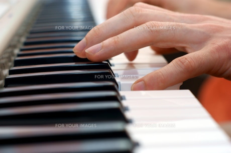 hands and piano playerの写真素材 [FYI00680014]