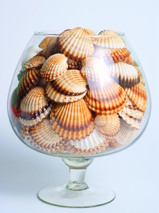 sea \u200b\u200bshells in a glassの写真素材 [FYI00680455]