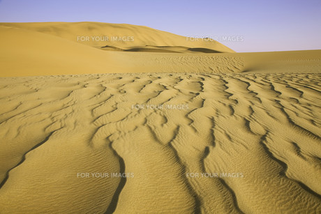 desertの素材 [FYI00680897]