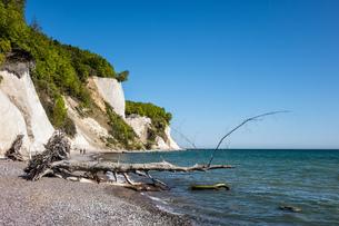 the baltic coastの素材 [FYI00681254]