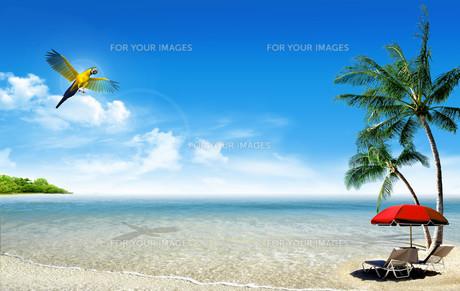 travel_vacationの写真素材 [FYI00681282]
