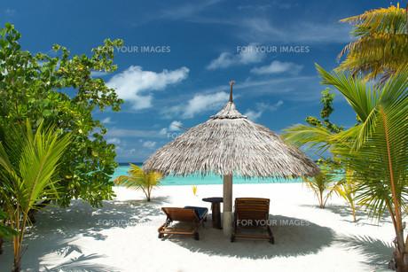 deckchair with umbrella on the beachの写真素材 [FYI00682156]