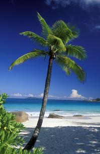 seychellesの写真素材 [FYI00682395]