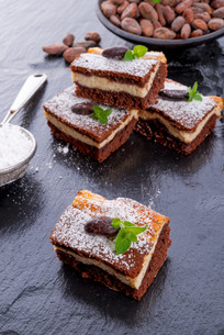 chocolate cheese cakeの写真素材 [FYI00682420]