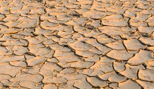 desertsの写真素材 [FYI00682463]