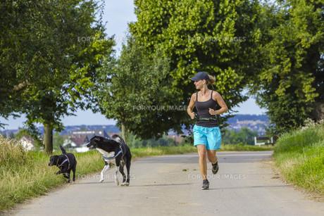 fitnessの写真素材 [FYI00683248]