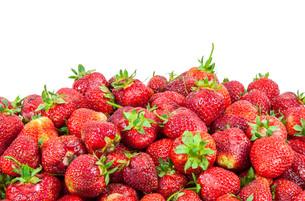 heap of strawberriesの写真素材 [FYI00683261]