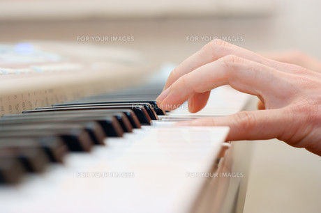 hands and piano playerの写真素材 [FYI00684054]