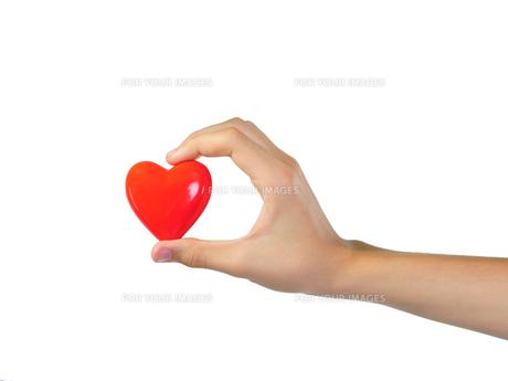 hand holding heartの写真素材 [FYI00684102]