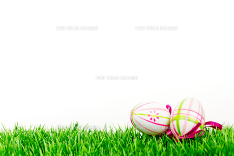 easter eggs on lawnの写真素材 [FYI00684571]