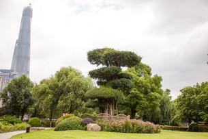 yuan garden in shanghaiの写真素材 [FYI00684580]