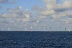 wind forceの写真素材 [FYI00684841]