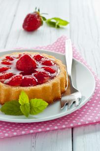 strawberry tartの素材 [FYI00685288]