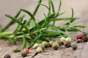 rosemary and pepperの写真素材 [FYI00685489]