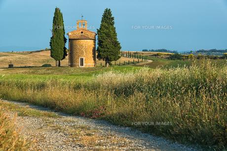 tuscanyの素材 [FYI00686032]
