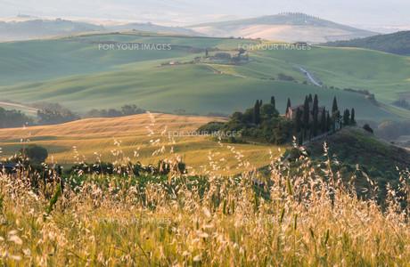 tuscanyの素材 [FYI00686036]