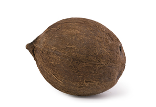 coconut isolated on white backgroundの写真素材 [FYI00687075]