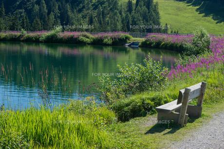 lakeside relaxの写真素材 [FYI00687422]
