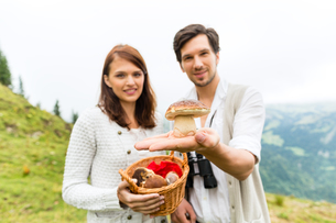 young mushroom pickers in the alps with mushroomsの写真素材 [FYI00687809]