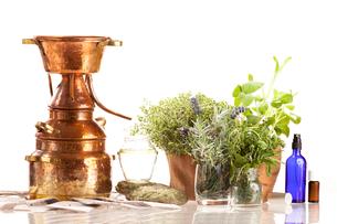 distillery for oil and hydrolatgewinnungの素材 [FYI00688088]