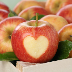apple fruit with heart theme of loveの写真素材 [FYI00688181]
