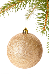traditional christmas ball suspended from a green pine branchの写真素材 [FYI00688884]