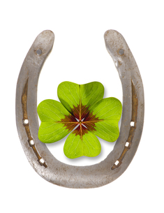 horseshoes and clover for luckの写真素材 [FYI00688939]