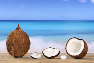 coconut fruit in the summer by the seaの写真素材 [FYI00688941]