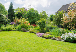 garden with lawn in springの写真素材 [FYI00689066]