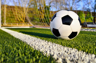football is behind the goal lineの写真素材 [FYI00691314]