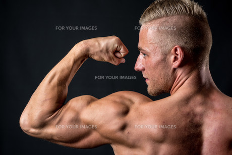 tricepsの素材 [FYI00691620]