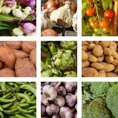 nine images of vegetablesの写真素材 [FYI00692057]