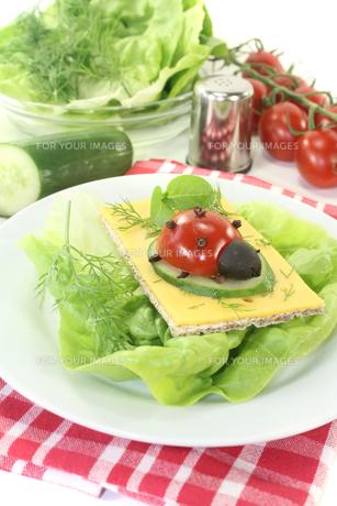 crispbread with cheese,lettuce and ladybugsの写真素材 [FYI00695418]