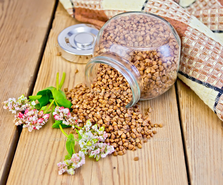 ingredients_spicesの素材 [FYI00695507]