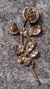 bronze colored roseの素材 [FYI00695675]