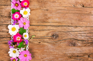 flowers on wood,space for textの写真素材 [FYI00695689]
