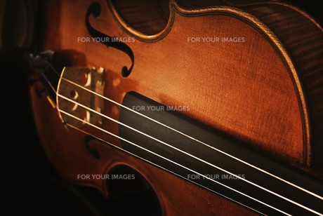 valuable old violinの素材 [FYI00695734]